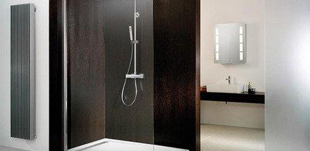 Walk-in / Paroi fixe / Salle de bain