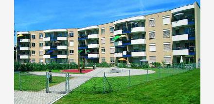 Gros-Chêne